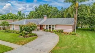 Single Family for sale in 248 ALLENS RIDGE DRIVE E, Palm Harbor, FL, 34683