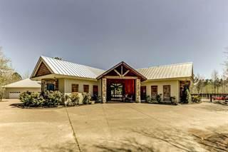 Single Family for sale in 518 BREEDLOVE, Michigan City, MS, 38647
