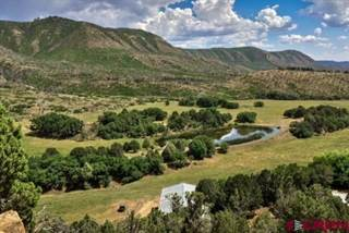 Farm And Agriculture for sale in TBD Road 41, Mancos, CO, 81328
