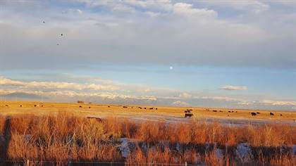 Lots And Land for sale in 47331  County Road L, Center, CO, 81125