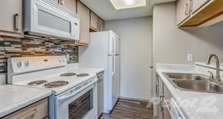 Apartment for rent in Collection at Overlook, San Antonio, TX, 78230