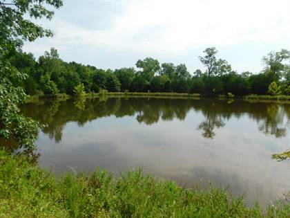 Farm And Agriculture for sale in 3355 Southwest 376 Road, El Dorado Springs, MO, 64744