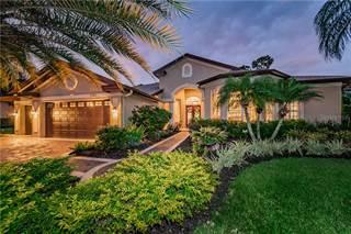 Single Family for sale in 3745 JOHNATHON AVENUE, East Lake, FL, 34685