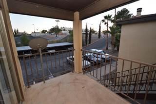 Condo for rent in 1620 N Wilmot Road D273, Tucson, AZ, 85712