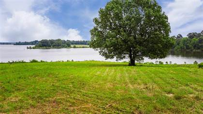 Lots And Land for sale in Lot 21 PR 52320, Pittsburg, TX, 75686