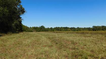 Lots And Land for sale in TBD CR 3514, Leesburg, TX, 75451