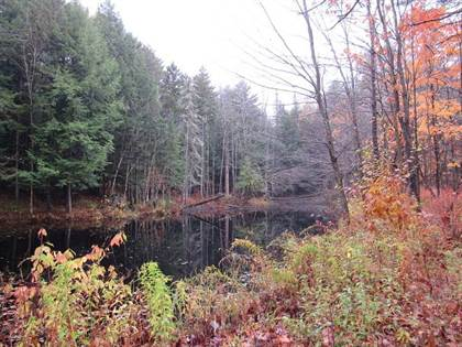 Lots And Land for sale in Lot #1 Sunset Circle, Greater Speculator, NY, 12190