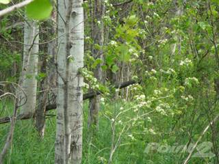 Land for sale in Rice Rd, Rock Creek, OH, 44084