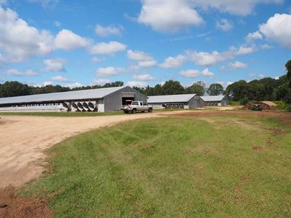 Farm And Agriculture for sale in 317 Branton Bay Rd, Kokomo, MS, 39643