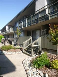 Apartment for rent in Shelfield Apartments, Carmichael, CA, 95608