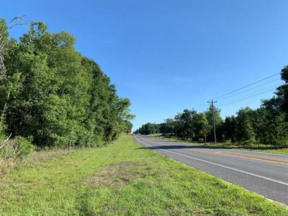 Lots And Land for sale in US HWY 129, Bell, FL, 32619