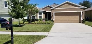 Single Family for sale in 4925 GRASSY KNOLL DRIVE, Tavares, FL, 32778