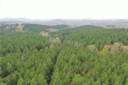 Lots And Land for sale in 00 Benton Road Extension, Sophia, NC, 27350