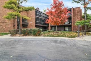 Condo for sale in 14501 Central Court 4, Oak Forest, IL, 60452