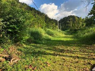 Single Family for sale in 55 MOROVIS NORTE SECTOR BUENA VISTA, Morovis, PR, 00687