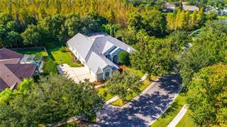 Single Family for sale in 19246 AUTUMN WOODS AVENUE, Tampa, FL, 33647