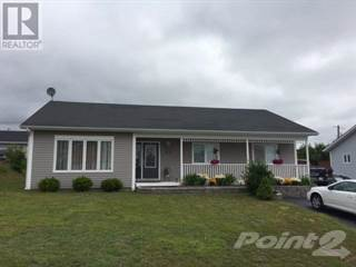 Single Family for sale in 29 PEDDLE Drive, Grand Falls - Windsor, Newfoundland and Labrador