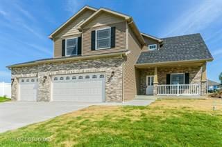 Single Family for sale in 1670 Eagle Bluff Drive, Bourbonnais, IL, 60914