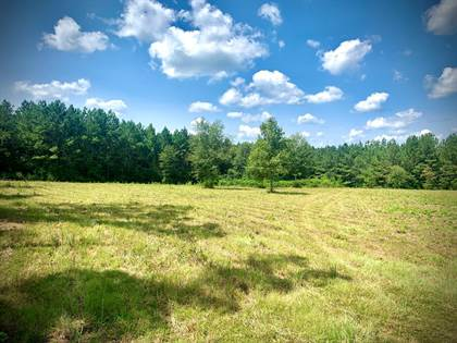 Lots And Land for sale in XXX Hwy 24, Liberty, MS, 39645