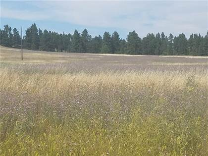Lots And Land for sale in Lot 49 Bundy ROAD, Lavina, MT, 59046
