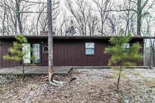 Single Family for sale in 714 Leuckel Dr, Van Buren, MO, 63965