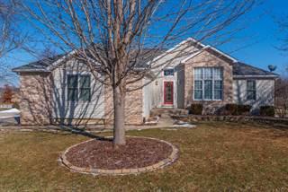 Single Family for sale in 901 Barbara Drive, Heyworth, IL, 61745