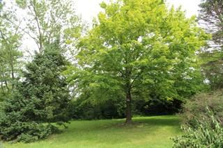 Land for sale in 11450 West 123rd Place, Palos Park, IL, 60464