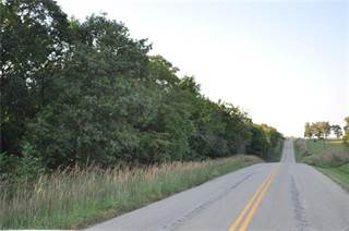 Land for sale in B Highway, Cowgill, MO, 64637