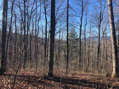 Lots And Land for sale in Adderfly Ct, Spruce Pine, NC, 28777