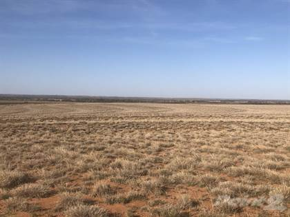 Farm And Agriculture for sale in County Road 21, Estelline, TX, 79233
