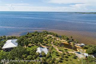 Single Family for sale in 10492 Pine Island Drive, Chassahowitzka Wildlife Refuge, FL, 34607