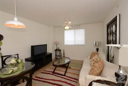Apartment for rent in 150 NE 79th St, Miami, FL, 33138