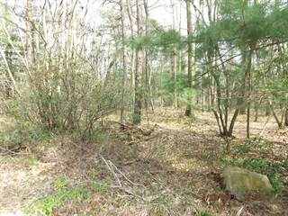 Land for sale in Lot 19 LONG VIEW Ln, Pocono Pines, PA, 18350