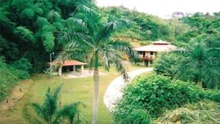Residential Property for sale in Sr 794 E KM 1.6 MOUNTAIN E, Aguas Buenas, PR, 00703