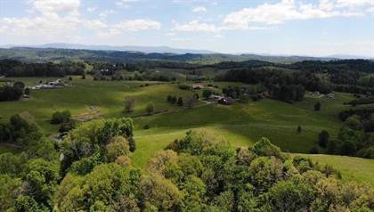 Lots And Land for sale in 100 Black Horn Lane, Baileyton, TN, 37745