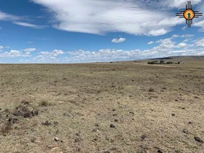 Lots And Land for sale in 1794 Heringa Rd, Grenville, NM, 88424