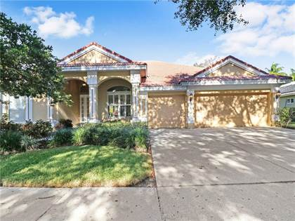 Residential Property for sale in 9110 WOODRIDGE RUN DRIVE, Tampa, FL, 33647