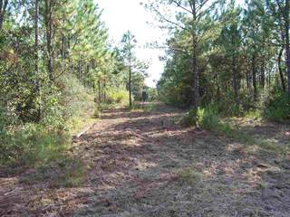 Land for sale in PINE BLOSSOM RD, Milton, FL, 32570
