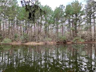 Lots And Land for sale in Acers 105+/- ACS, Woodville, TX, 75979