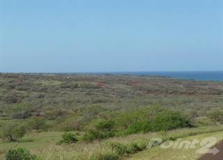 Land for sale in 1024 Hao Kun, Kepuhi, HI, 96770