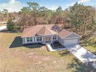 Single Family for sale in 12144 FINCH ROAD, Annutteliga Hammock, FL, 34614