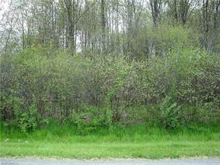 Land for sale in 1904 Beaver Dam Dr, Roaming Shores, OH, 44084