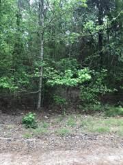 Land for sale in 522 Arborcrest Drive, Brookeland, TX, 75931