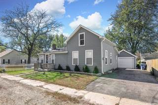 Single Family for sale in 226 Wilson Street, Paw Paw, IL, 61353