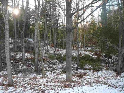 Lots And Land for sale in TBD S Woodridge 239 & West 1/2 0f 240, Marquette, MI, 49855