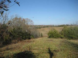 Farm And Agriculture for sale in 377 Cardwell-Tablow, Willisburg, KY, 40330