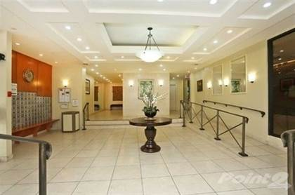 Basement Apartments For Rent In Ajax Pickering
