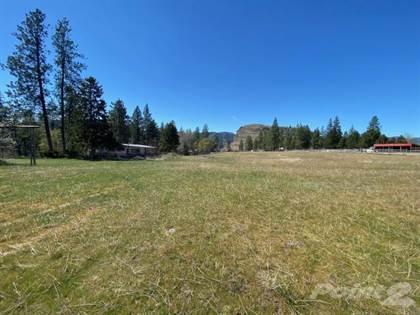Farm And Ranch for sale in 4137 MCLEAN CREEK ROAD, Thompson - Okanagan, British Columbia