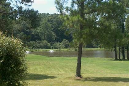 Lots And Land for sale in 3821 Ga Highway 112 W, Ashburn, GA, 31714