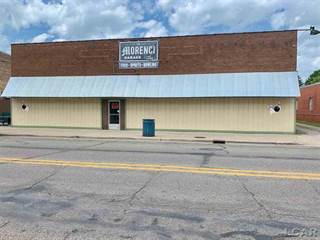 Comm/Ind for sale in 136 W Main, Morenci, MI, 49256